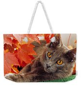 Autumn Reds And Ambers Weekender Tote Bag