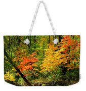 Autumn Reflects Weekender Tote Bag