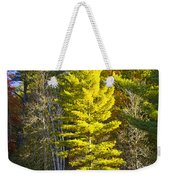 Autumn Scene Of Colorful Trees On The Little Manistee River In Michigan No. 0855 Weekender Tote Bag