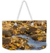 Autumn Slipping Away 0437 Weekender Tote Bag