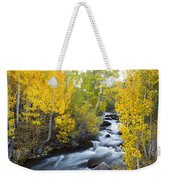 Autumn Stream V Weekender Tote Bag
