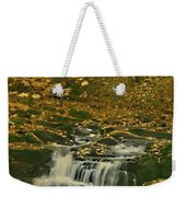 Autumn Surrounded In Color Weekender Tote Bag
