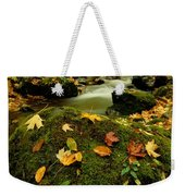 Autumn View Shows Fallen Leaves Weekender Tote Bag