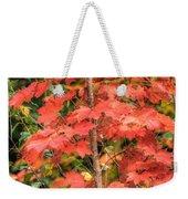Autumnal Acer Weekender Tote Bag