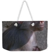 Baboon Carrying Her Baby Weekender Tote Bag