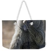 Baboon With Headache Weekender Tote Bag