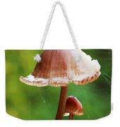 Baby And Parent Mushroom Weekender Tote Bag