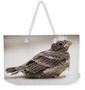 Baby Bird 1 Weekender Tote Bag