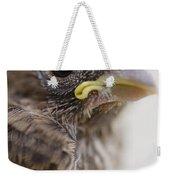 Baby Bird 3 Weekender Tote Bag by Jessica Velasco