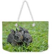 Baby Bunnies Weekender Tote Bag