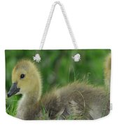 Baby Goose Takes A Break Weekender Tote Bag