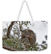 Baby Koala Weekender Tote Bag