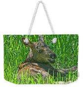 Baby Moose Weekender Tote Bag
