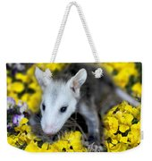 Baby Opossum In Flowers Weekender Tote Bag