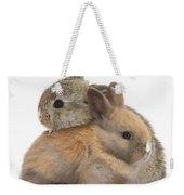 Baby Rabbits Weekender Tote Bag