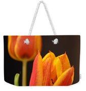 Baby Tulips Close Up Macro Weekender Tote Bag