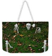 Back Yard Bone Yard Weekender Tote Bag by LeeAnn McLaneGoetz McLaneGoetzStudioLLCcom
