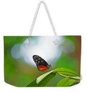 Backlit Butterfly Weekender Tote Bag