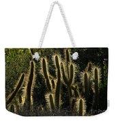 Backlit Cactus Weekender Tote Bag