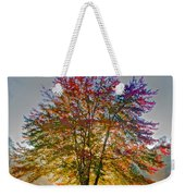 Backlit Maple In Autumn's Light Weekender Tote Bag