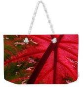 Backlit Red Leaf Weekender Tote Bag