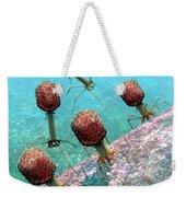 Bacteriophage T4 Virus Group 1 Weekender Tote Bag by Russell Kightley