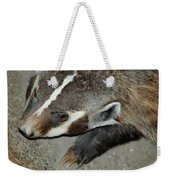 Badger On The Loose Weekender Tote Bag