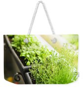 Balcony Herb Garden Weekender Tote Bag by Elena Elisseeva