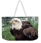 Bald Eagle At Riverside  Weekender Tote Bag
