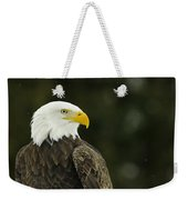 Bald Eagle In Ecomuseum Zoo Weekender Tote Bag