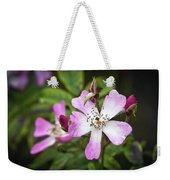 Ballerina Shrub Rose 3303 Weekender Tote Bag