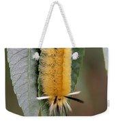 Banded Tussock Moth Caterpillar Weekender Tote Bag