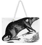 Bandicoot Weekender Tote Bag