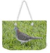 Bar-shouldered Dove Weekender Tote Bag