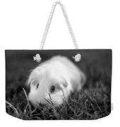 Barbie Guinea Pig Weekender Tote Bag