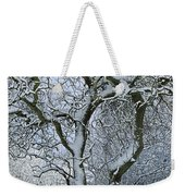 Bare, Snow-covered Tree In Winter Weekender Tote Bag