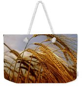 Barley, Co Meath, Ireland Weekender Tote Bag