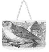 Barn Owl, 1877 Weekender Tote Bag