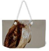 Barn Owl Of Michigan Weekender Tote Bag
