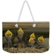 Barn Swallow Hirundo Rustica Chicks Weekender Tote Bag by Cyril Ruoso