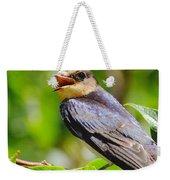 Barn Swallow In Sunlight Weekender Tote Bag