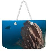 Barrel Sponge And Diver, Papua New Weekender Tote Bag