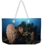 Barrel Sponge On Liberty Wreck, Bali Weekender Tote Bag