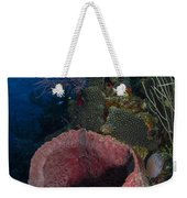 Barrel Sponge Seascape, Belize Weekender Tote Bag