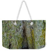 Base Of The Tree View Weekender Tote Bag