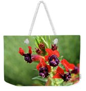 Bat Face Cuphea Weekender Tote Bag