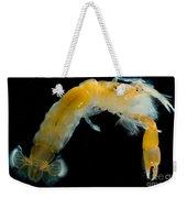 Bay Ghost Shrimp Weekender Tote Bag