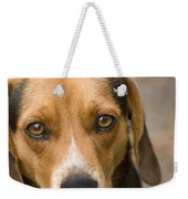 Beagle Hound Dog Eyes Of Love Weekender Tote Bag