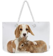 Beagle Pup And Rabbit Weekender Tote Bag