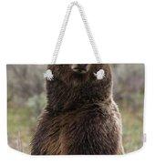 Bear 399 Weekender Tote Bag